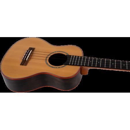 Guitare Electro-acoustique RICHWOOD D-50-CE