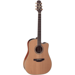 Guitare Takamine EN10C...