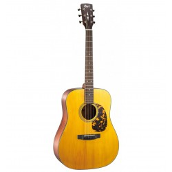 Guitare Folk CORT EARTH300V...